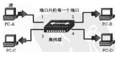 network7