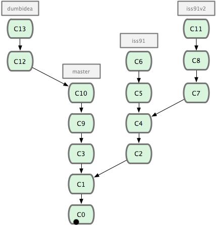 git_branch20